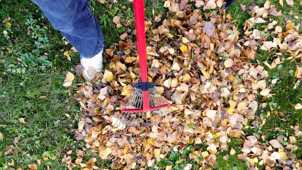 Почистване на двор